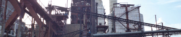 Bharat Sugar Mills